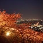 【神奈川県松田町】まつだ桜まつりに行ってきた【ライトアップ・夜景】