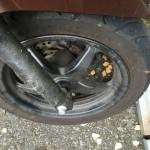 【不具合】リード125の前輪、空気漏れが発生!